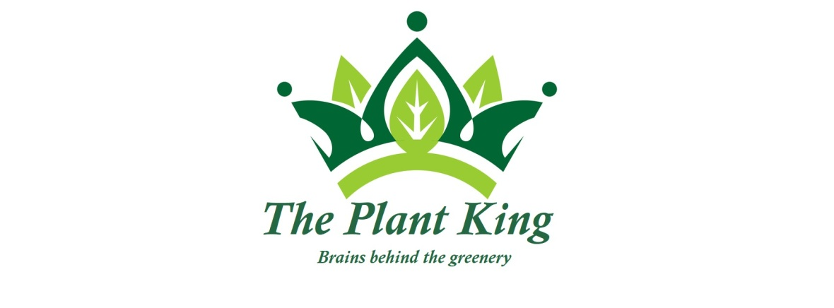 Plant_King_2